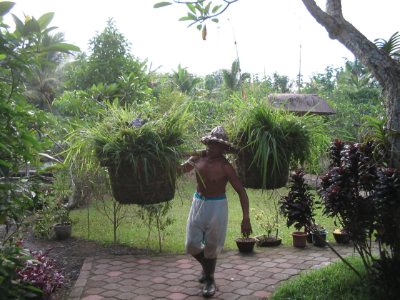 ISKCON Gianyar Garden